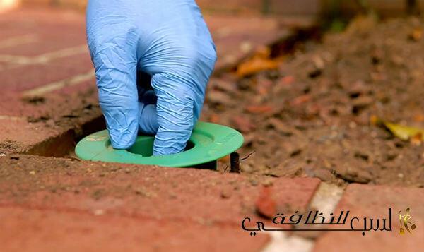Photo of شركة مكافحة النمل الابيض بالرياض 0556322445 خصم 10%